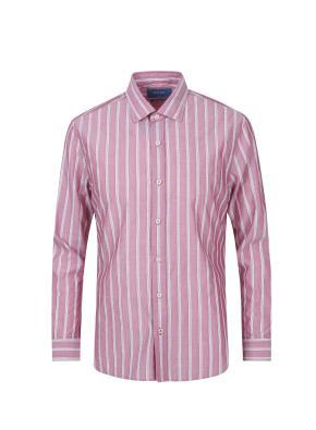 세미와이드 멀티 스트라이프 셔츠 (WN)