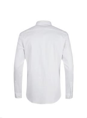 면혼방 레귤러카라 드레스 셔츠