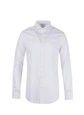 면혼방 세미와이드카라 드레스 셔츠 (WT)