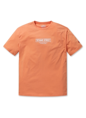 공용 세서미 티셔츠1 _ (OR)
